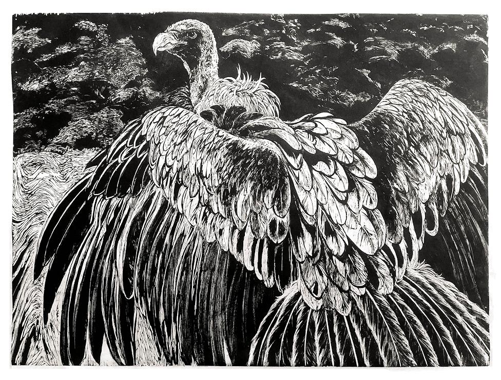 big-bird.png