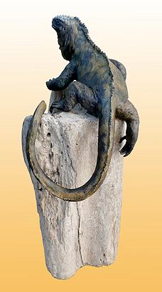 bio-iguana.png