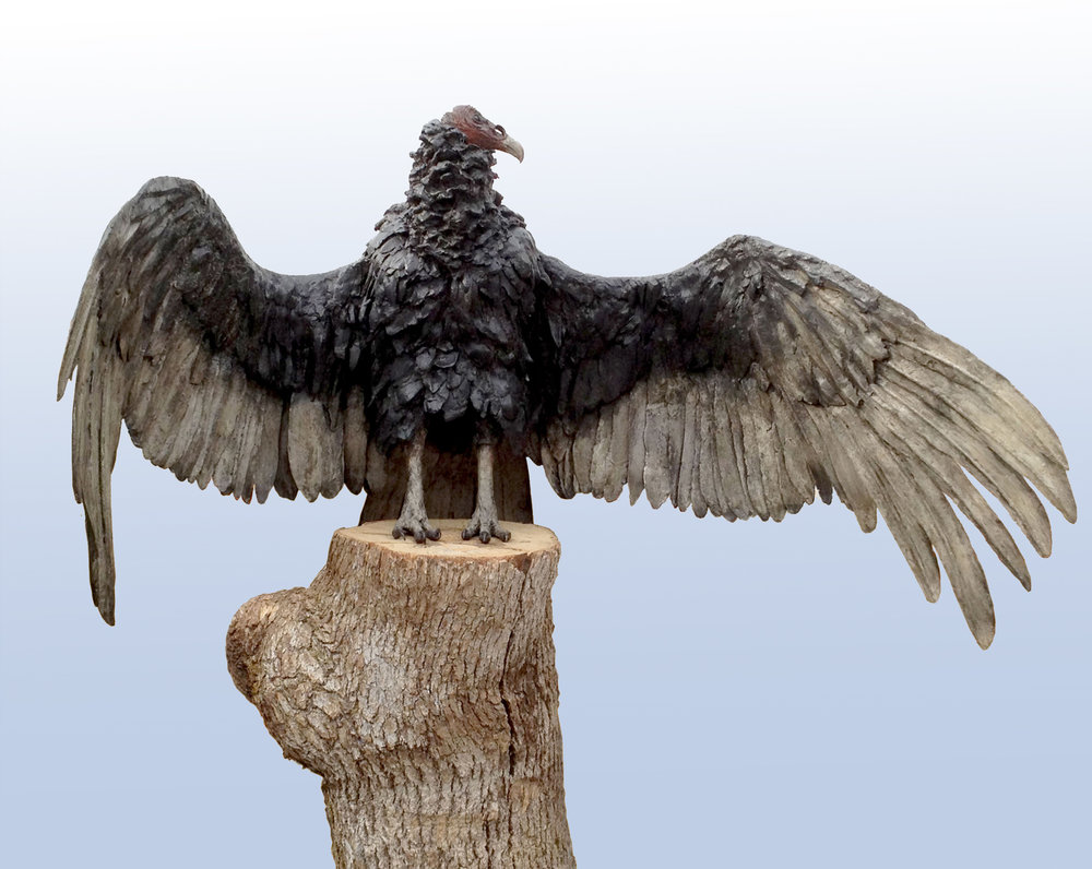 Welcome to Vulture Sculpture'S New Website! -