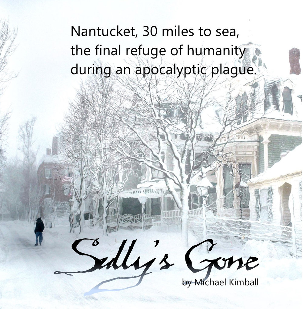 Sully's Gone   On Nantucket Island, the last holdout of humanity in a worldwide zombie plague, Sully shows up at his sister's tavern on the night of his death.