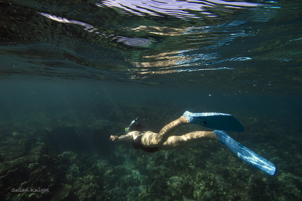 Hawaii underwater Andrea.jpg