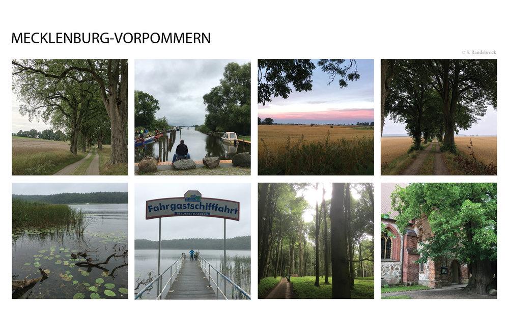 Mecklenburg_Mosaik.jpg