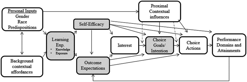 Social Cognition Theory - A Framework