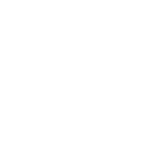 bolt only logo white.png