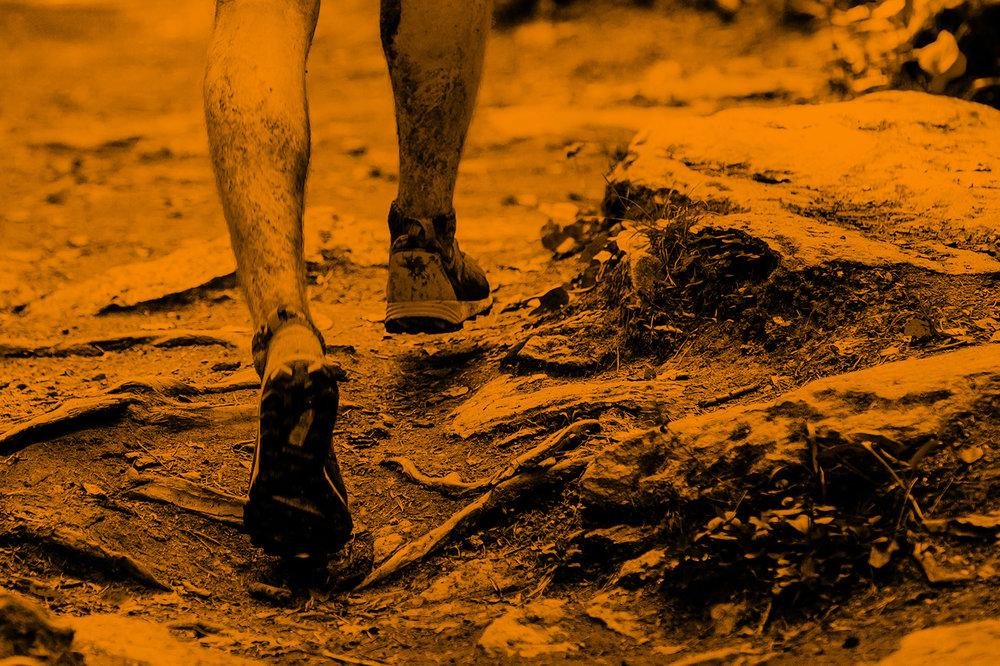 HAVOC RACE - 8.5km MEN'S & WOMEN'S INDIVIDUAL OCR