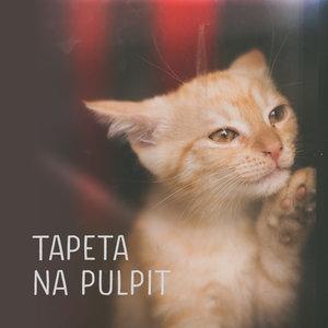 Grafikot Tapeta Na Pulpit Wrzesień 2018