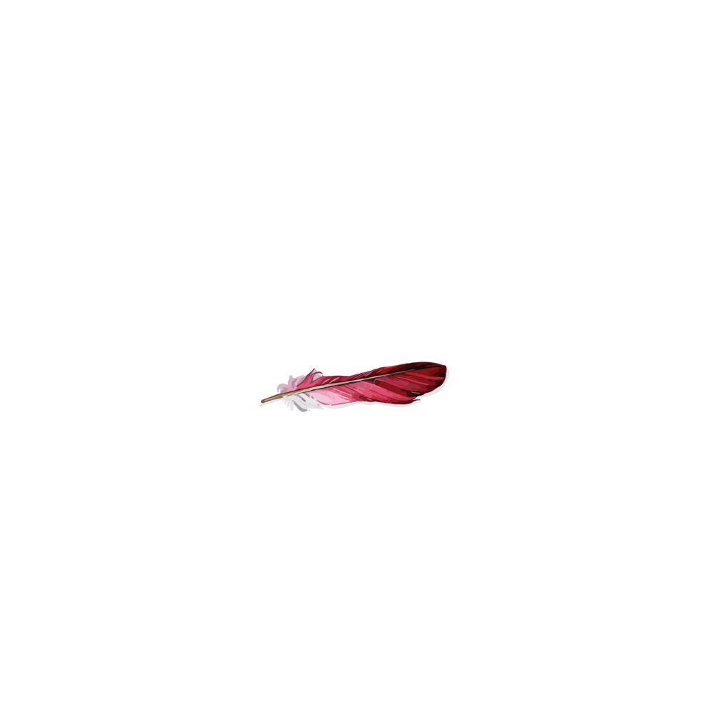 BRIMS LOGO_WHIITE FONT.png