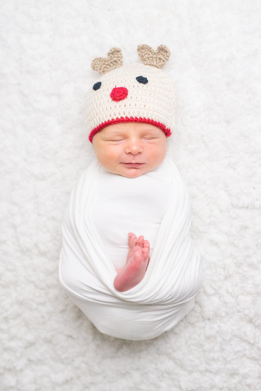 Slater Reindeer.JPG