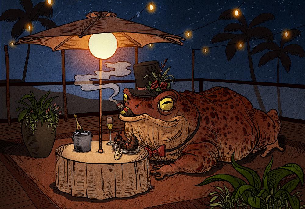 toadfinal.jpg