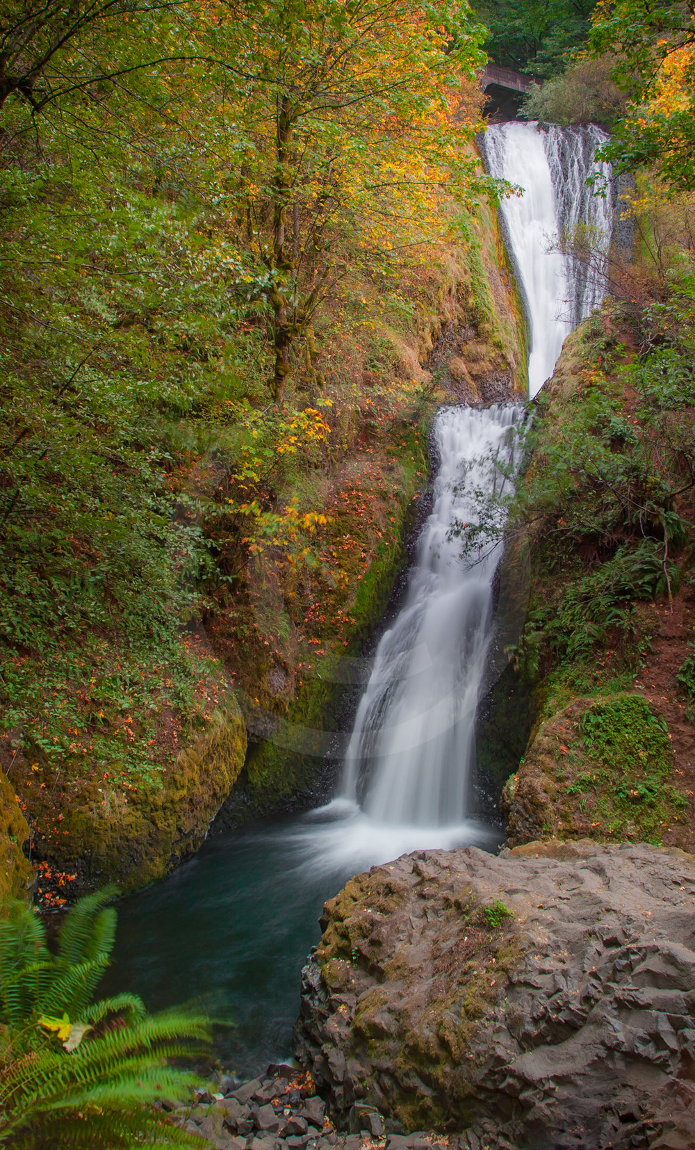 Horse-tail Falls