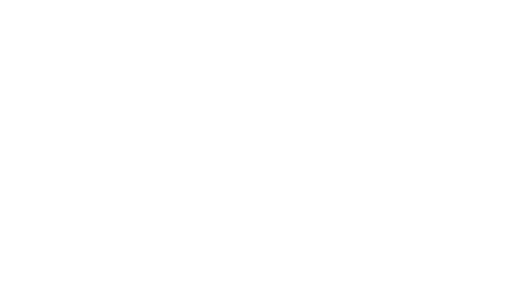 Two Bad Labs Vineyard