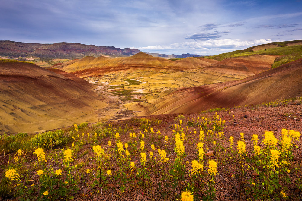Colorful layers reveal years of history in the John Day Fossil Beds National Monument.