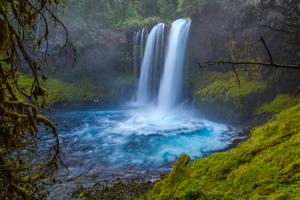 Perhaps the most scenic waterfall along the McKenzie River National Recreational Trail.