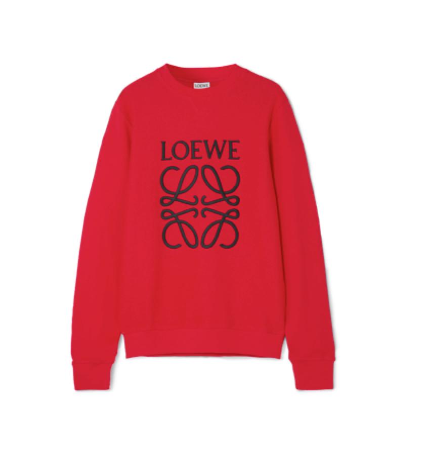 LOEWE -  Sweater