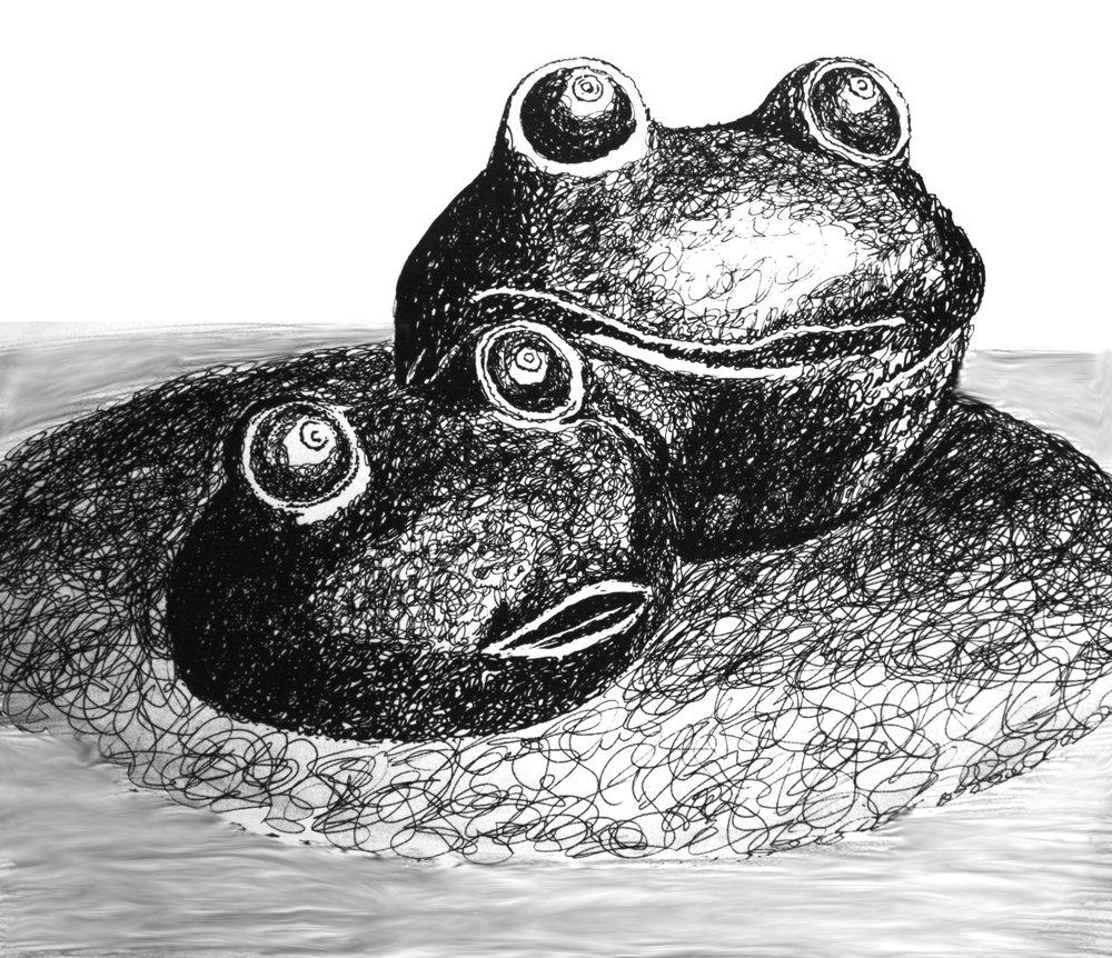 Frogs | Pen
