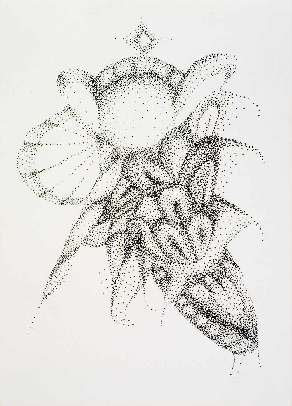 Honey Wish  Pen on paper, 8x6in.