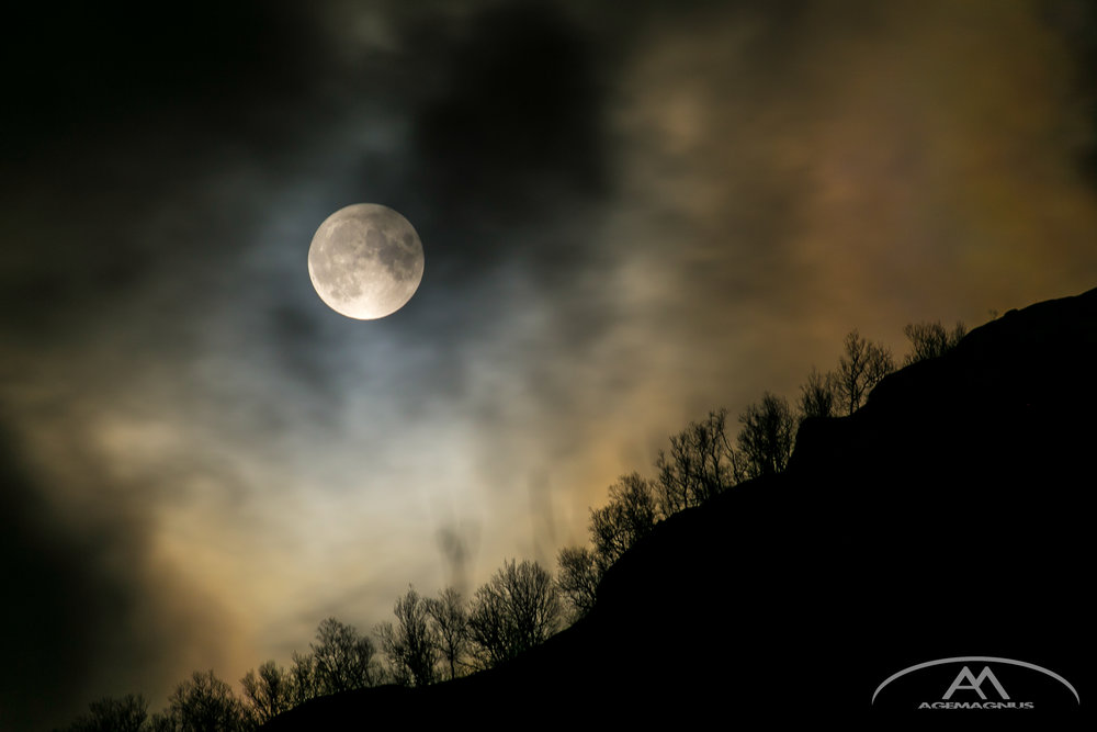 Moonlight-3-2.jpg