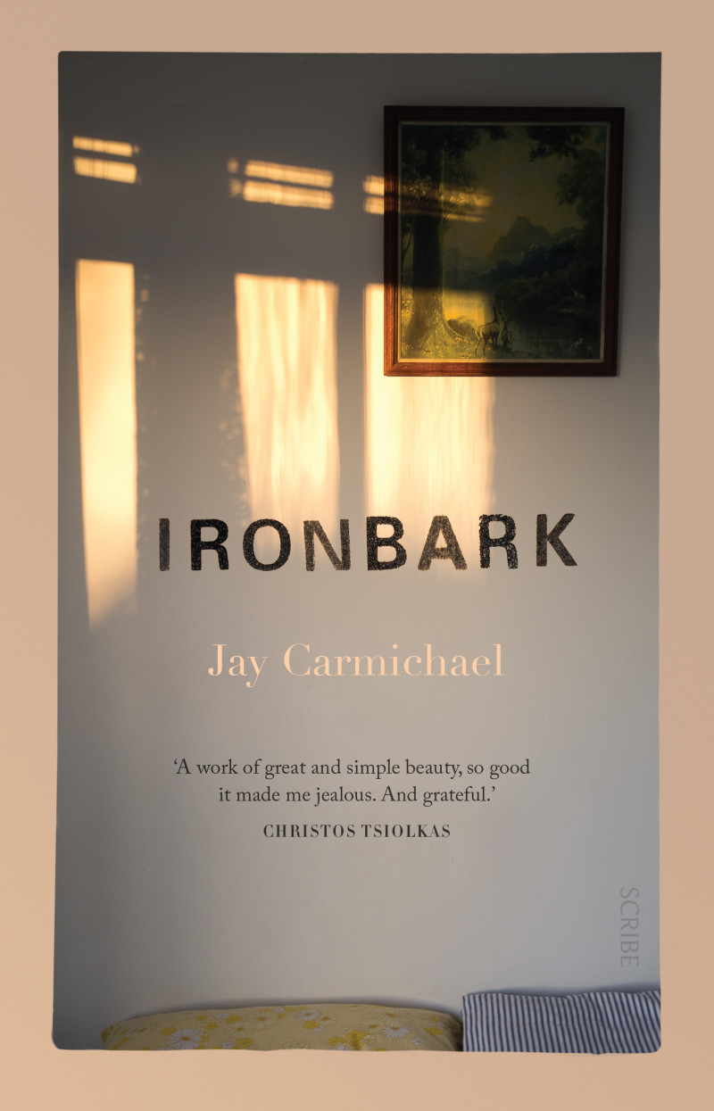 99 - Ironbark by Jay CarmichaelJay Carmichael's novel, shortlisted for the Victorian Premier's Unpublished Manuscript Award, is set in a tiny town in Central Victoria, where the author grew up.It's about a young man whose best friend has died, and who must deal, too, with the  conflict and confusion of life as a gay man in rural Australia. As its title reveals, it explores how place can shape personal identity by both offering and restricting potential.For so many young men, this portrait is devastating and incredibly moving: it asks, what does it really mean to be a man? 'This is a novel of coming of age and of grief that astonishes us by its wisdom and by its compassion. It's a work of great and simple beauty, so good it made me jealous. And grateful.'CHRISTOS TSIOLKAS