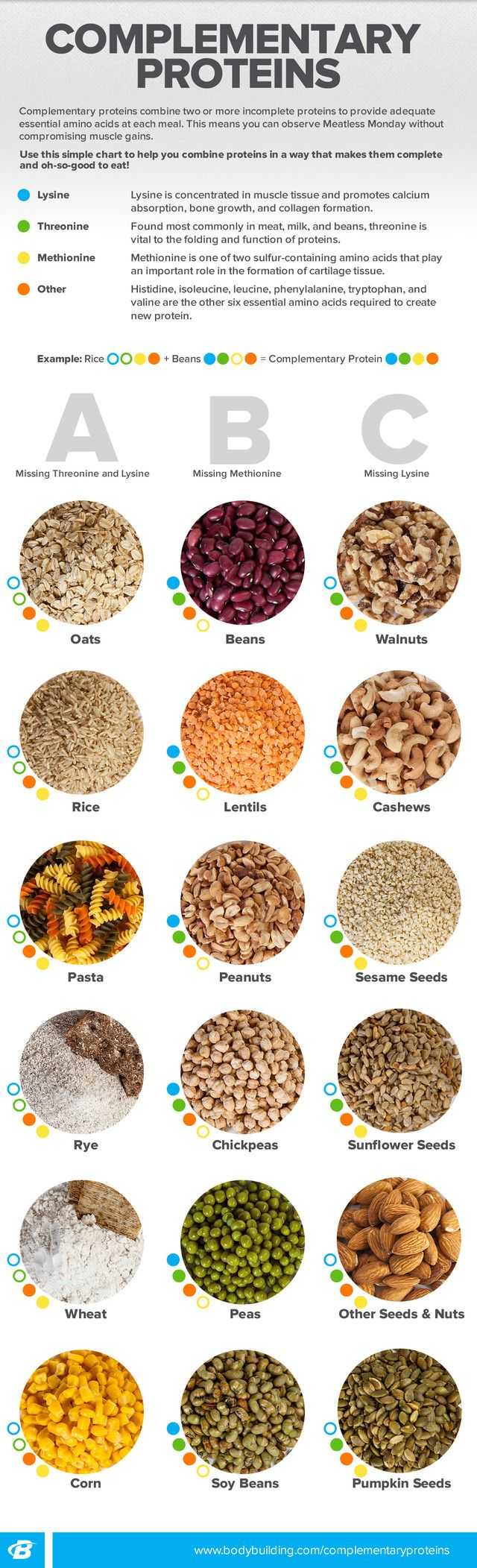 bf6adf2c0d833a84e9c2ec58f80e9640--vegan-protein-protein-recipes.jpg