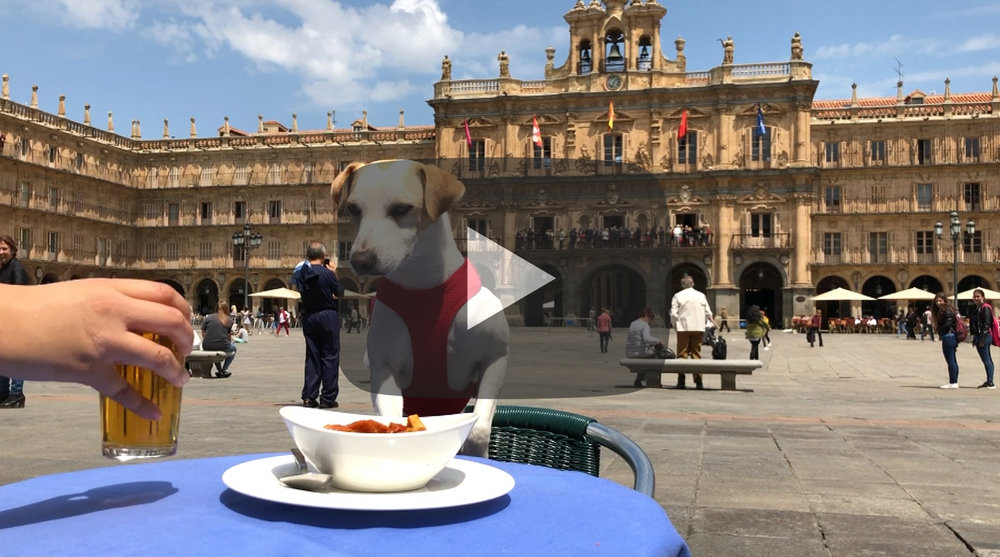 Pipper en Salamanca
