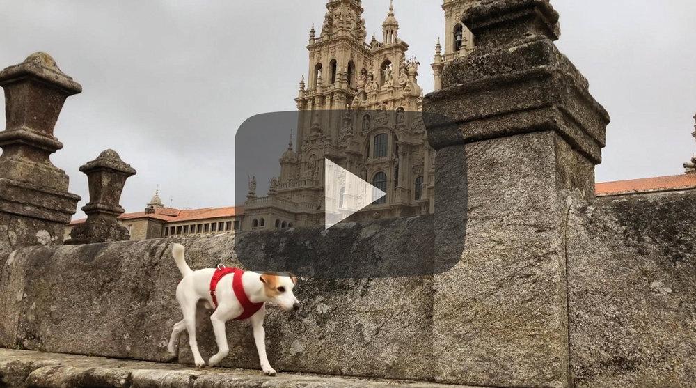 Pipper en Galicia