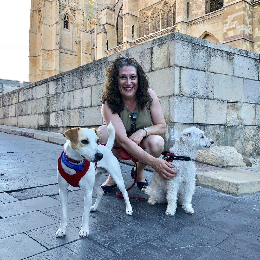 Junto a la catedral de León.