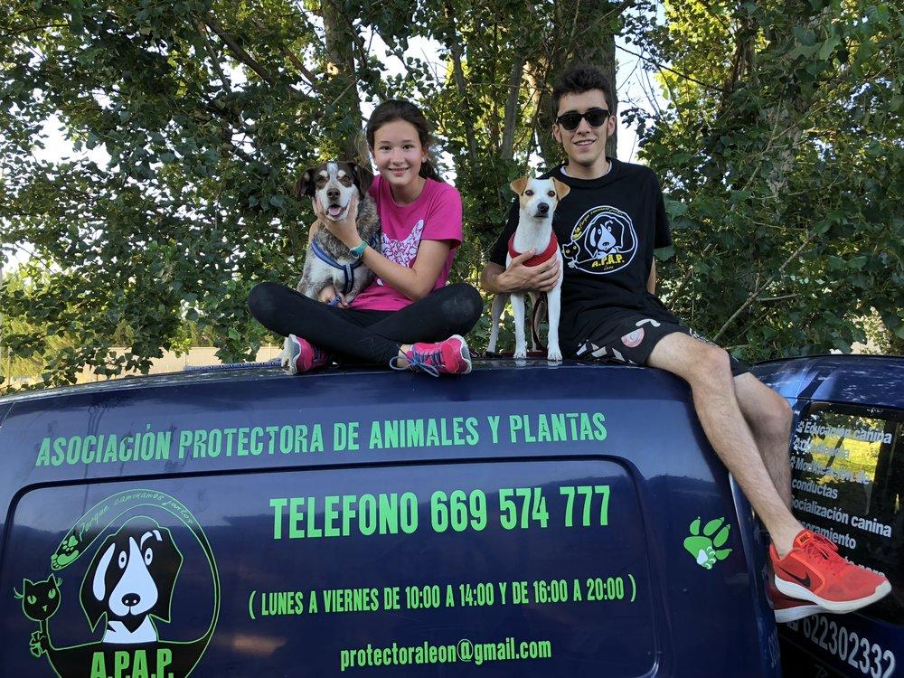 Pipper y Tura con sus amigos humanos Pablo y Rocío, voluntarios.