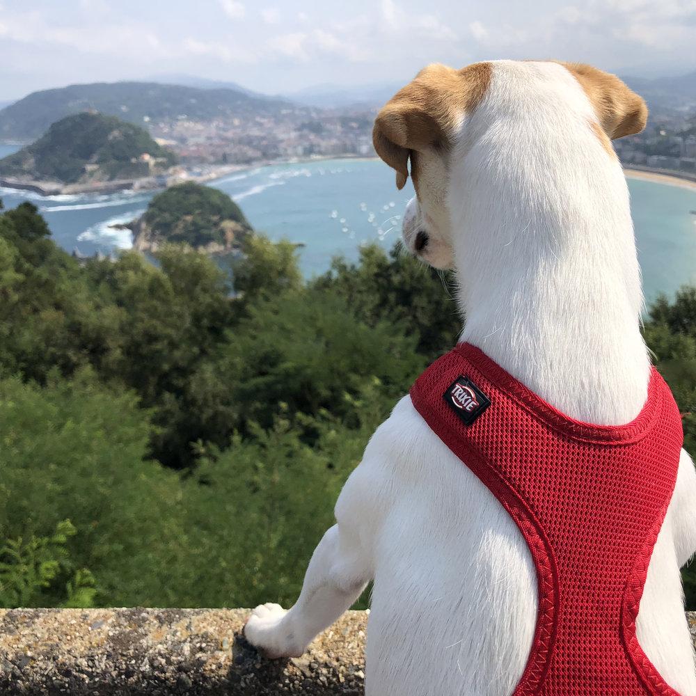 La famosa vista de Donosti desde el parque Monte Igueldo.
