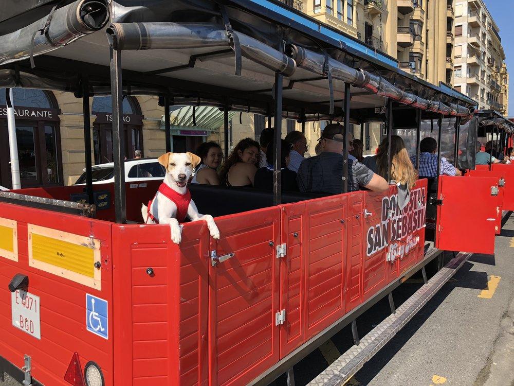 Pipper visitó el tren turístico de San Sebastián en septiembre de 2018.