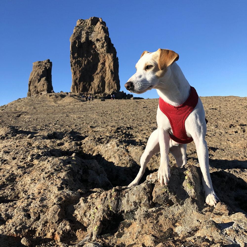 En el Roque Nublo.