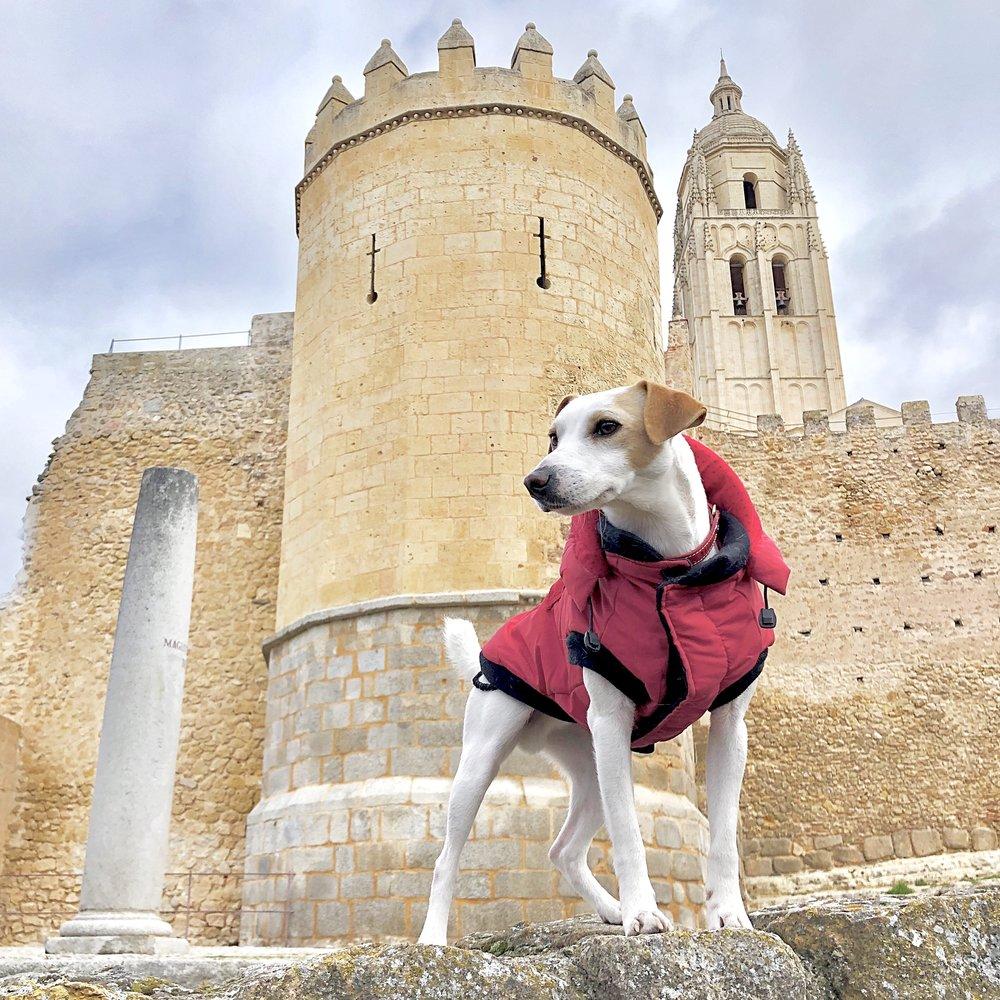 Junta a la Puerta de San Andrés y la muralla, ambas visitables.