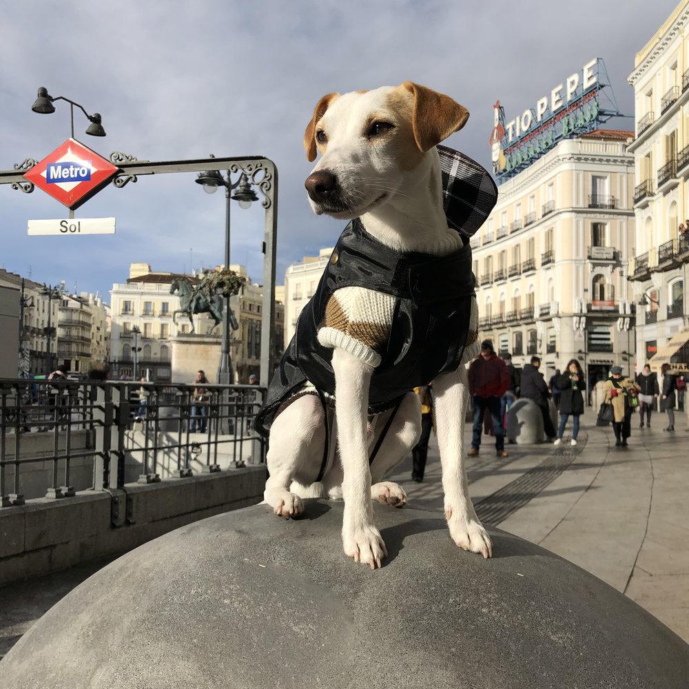 Un chulapo en la Puerta del Sol.