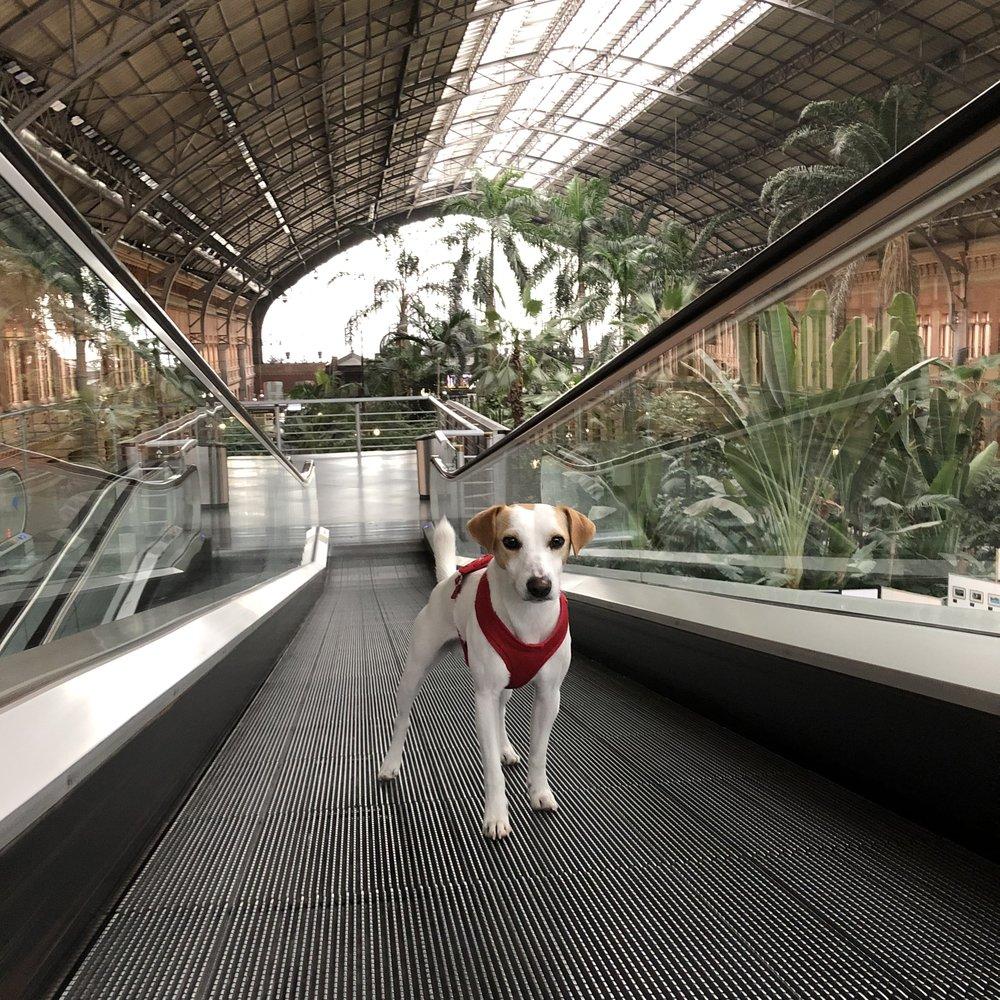 En la estación de Atocha.