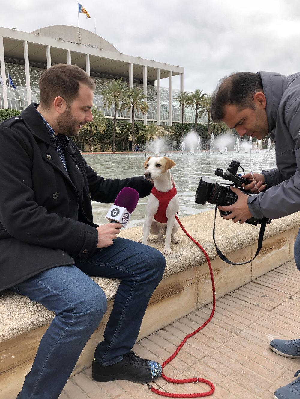 Con mis colegas de À Punt TV en Valencia.