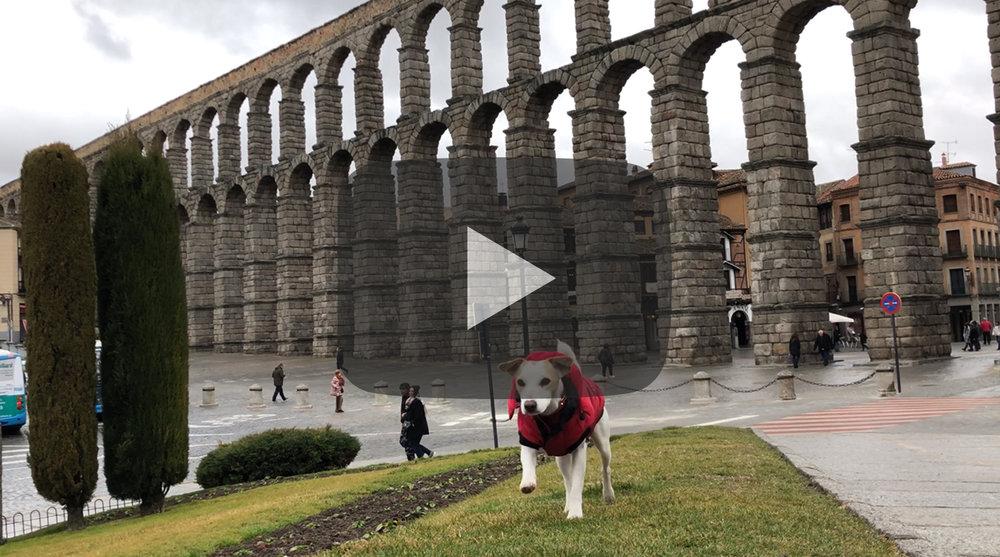 Pipper en Segovia.