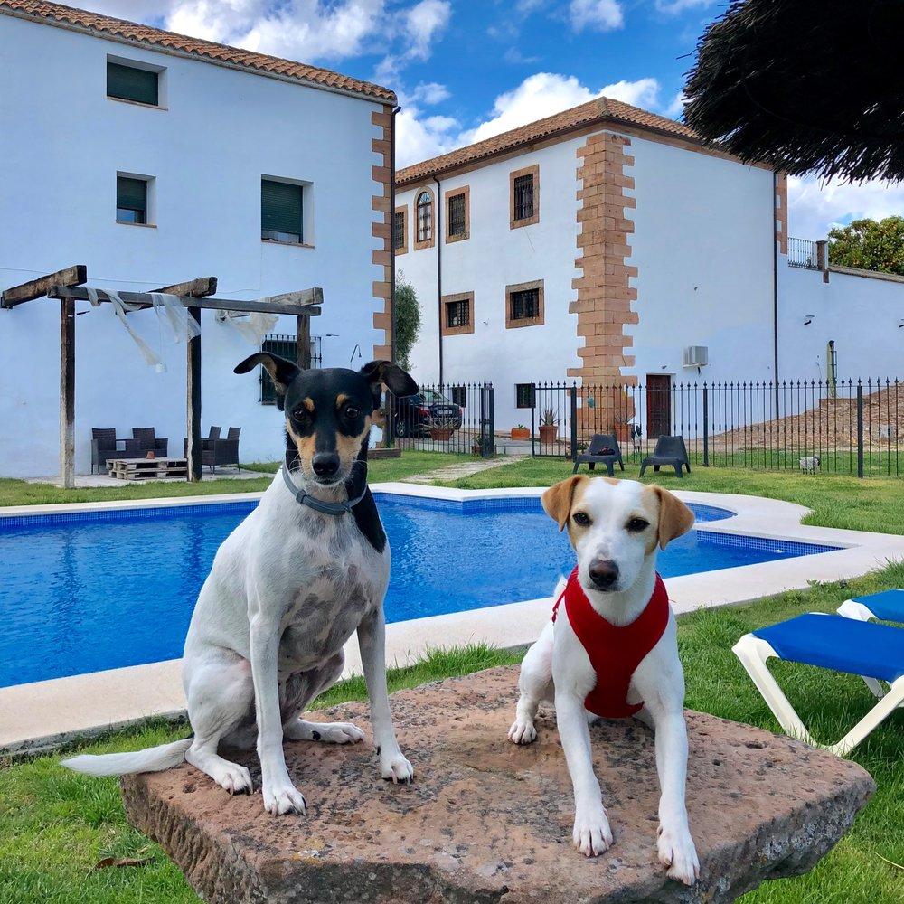 Con Sansa, mi anfitriona en la casa rural Molino La Nava.
