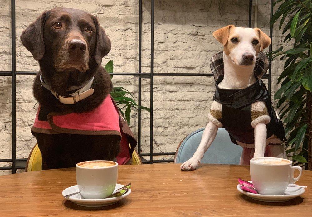 """Dora, de Dogtor Animal, con Pipper en un momento de la grabación del """"corto"""" Pipper en Madrid."""