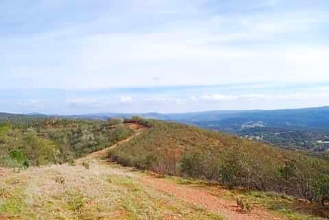 MCKEITH RETREAT is located by the Sierra Aracena near Seville in Southwest Spain and is now booking! Go to McKeithRetreat.com to book your healthy holiday retreat now! Bookings coming in quickly. Spaces are limited.