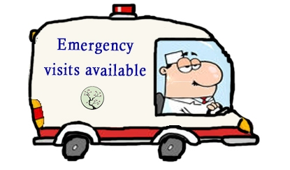 emergency visits available.jpg