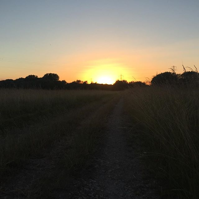 From the rising of the sun to its setting, may the name of the Lord be praised #cstf #ruraloxford #nofilter #prayer