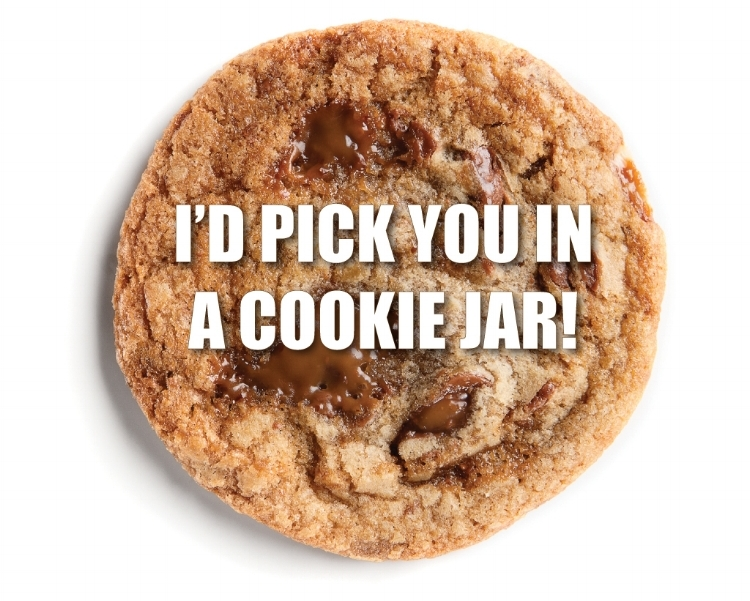 i'd pick you in a cookie jar