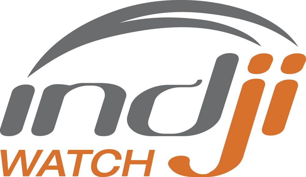 Indji Systems Logo.png