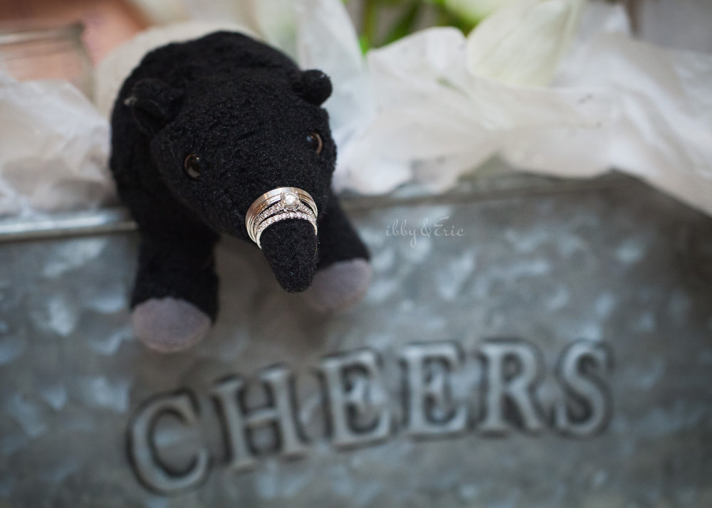 Wedding rings stacked on a stuffed animal tapir's nose sticking out of a gift box that says cheers.