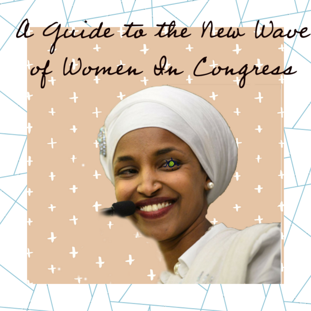 a guide to the new wave of women in congress.png