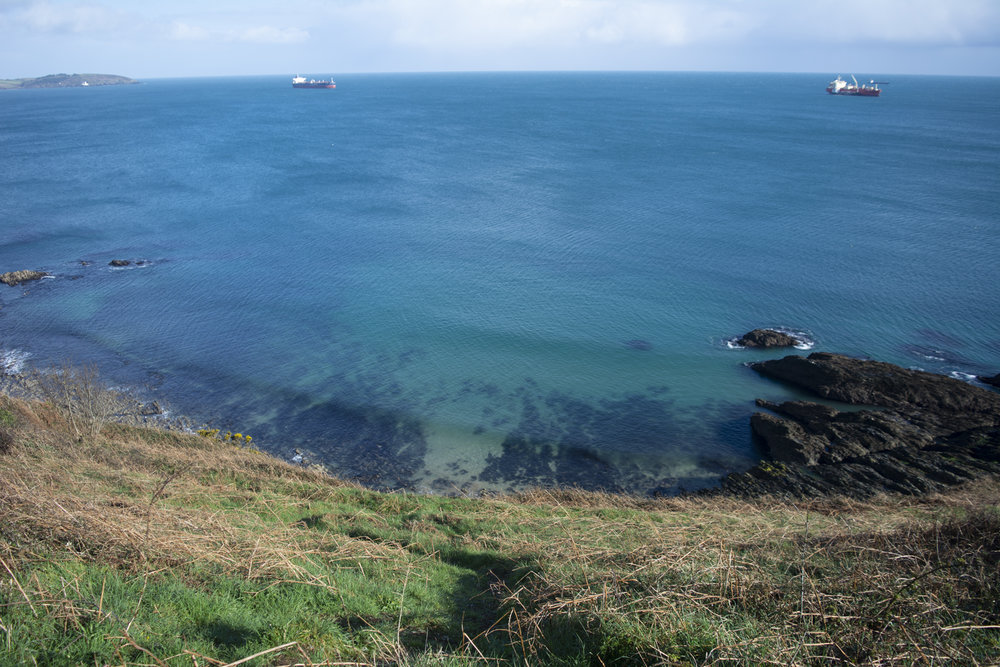 A photo from a recent walk where I joined Gail, from Swanpool to Maenporth, in Cornwall.