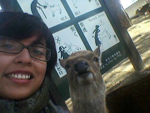 Selfie with a deer. Nara, Japan is a city full of friendly magical deer.
