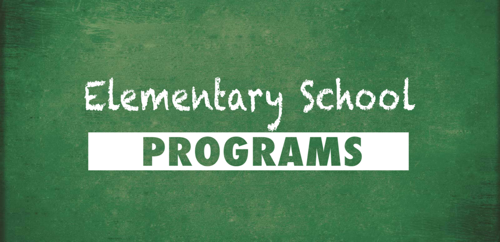 elementary programs.png