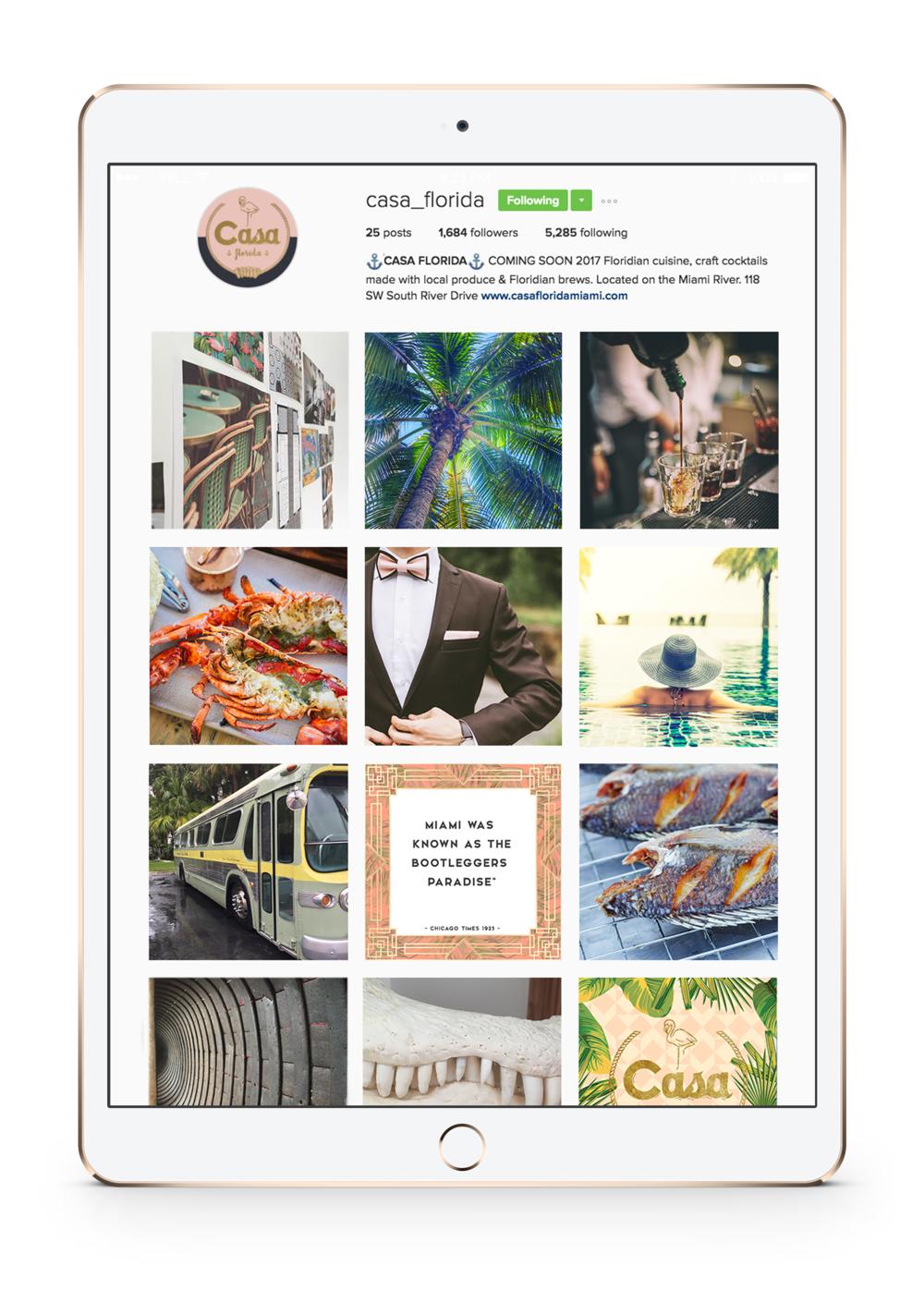 Casa_IG_iPad.png
