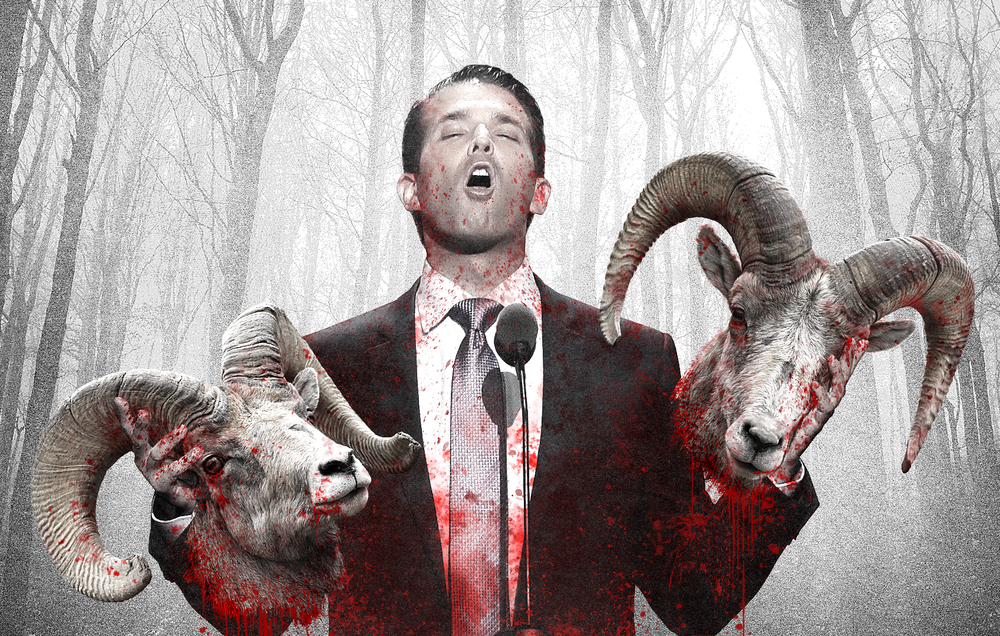 Donald-Trump-Jr_SHEEP-1.png
