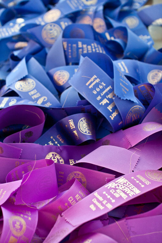 ribbon5.jpg